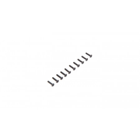 Flat Head Screws M2.5 x 12mm (10)